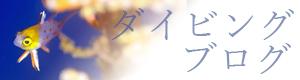 宮古島ダイビングブログ