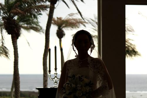 アラマンダ結婚