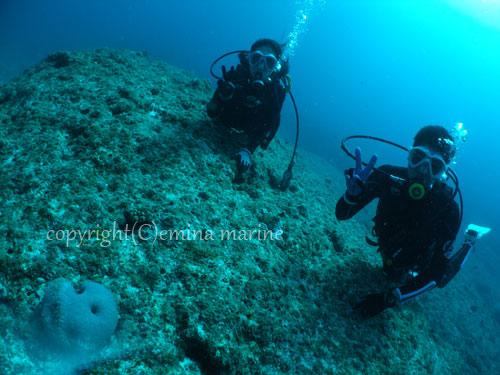 記念撮影体験ダイビング