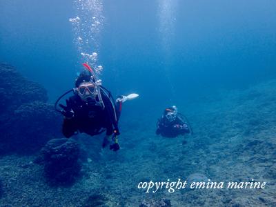 中性浮力ですいすい泳ぐ