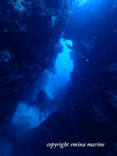 中の島チャネル2