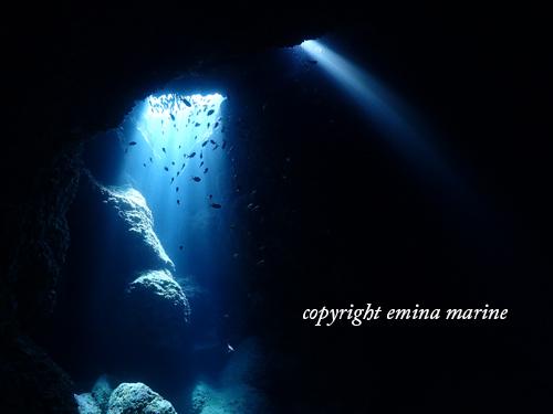 一の瀬ホールの光