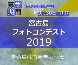 宮古島フォトコンテスト2019