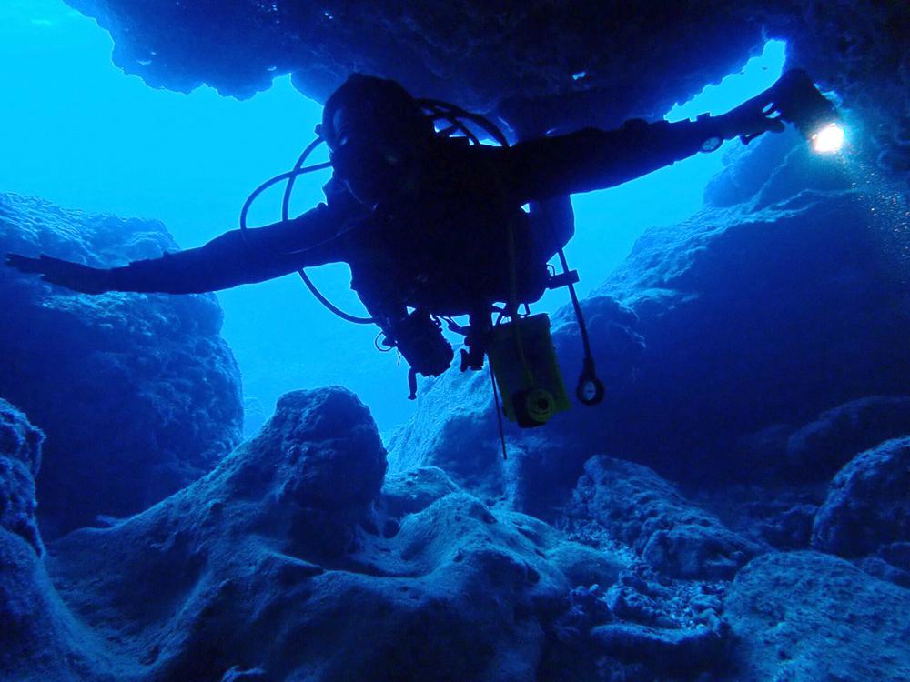 地形ダイビングを満喫するダイバー