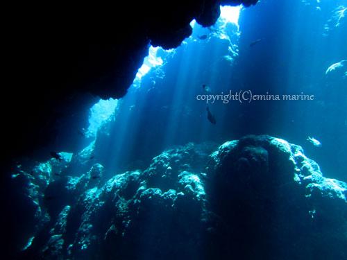中の島チャネルの光のカーテン
